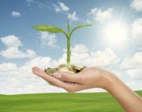 Grüne Anleihen: Feste Zinsen für nachhaltige Finanzierungen