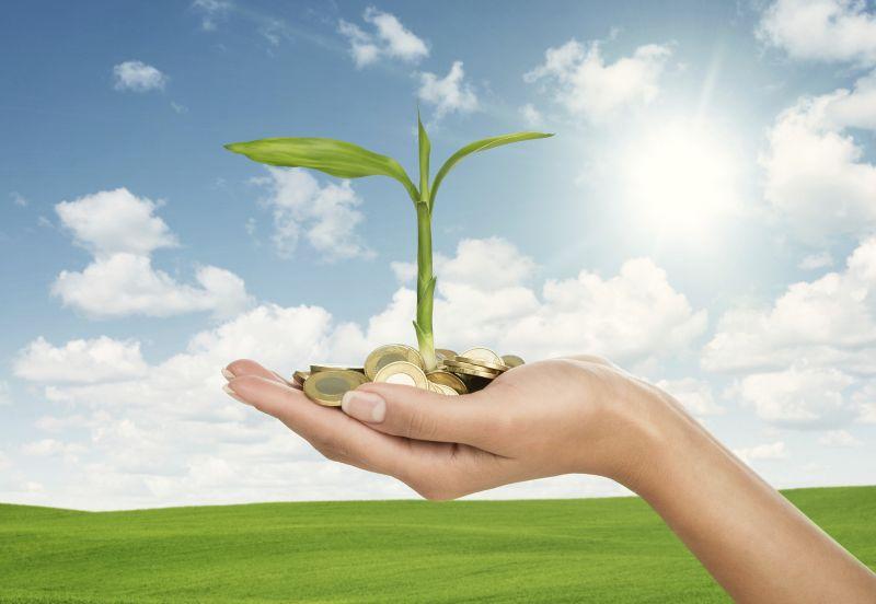 Rendite fürGrüne Anleihen: Feste Zinsen für nachhaltige Finanzierungen den guten Zweck: Impact Investing