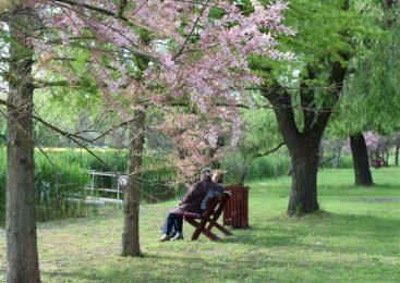Checkliste: Wie Sie am besten für das Alter vorsorgen können
