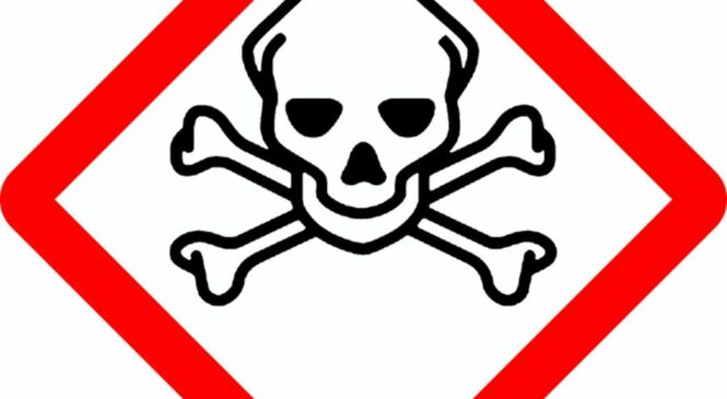 Mit Sicherheit notwendig: Das Gefahrstoffmanagement in Unternehmen